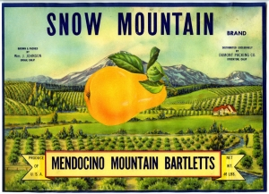 Snow Mountain Fruit Crate Label.